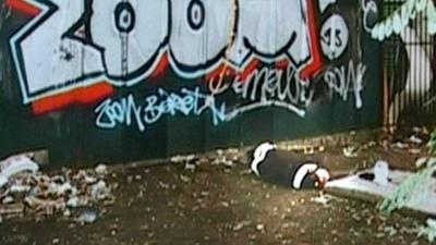 Bulgarian prostitute death exposes ruthless Albanian pimps